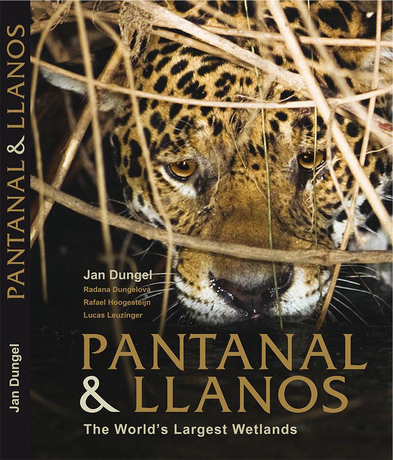 PANTANAL AND LLANOS