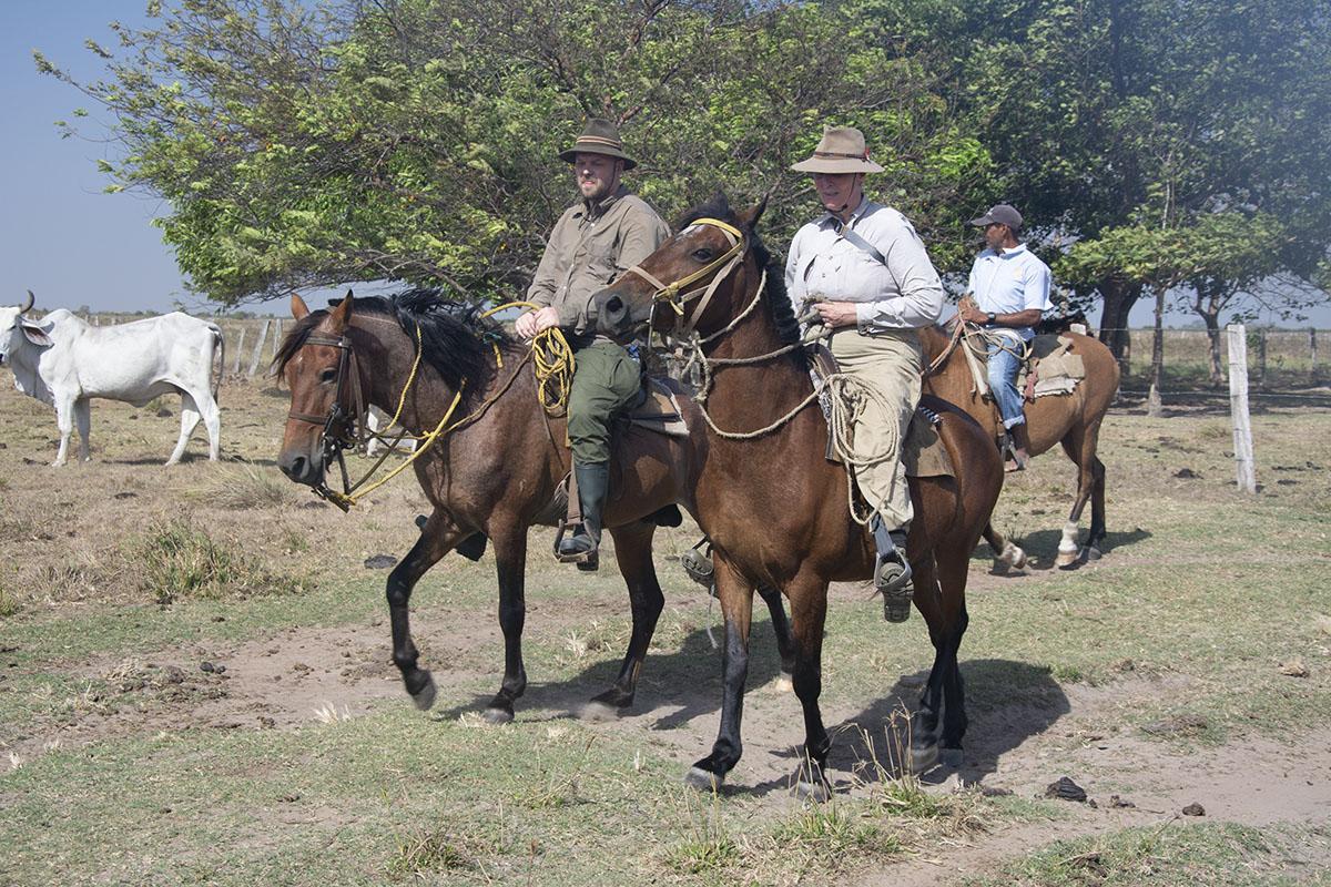 <p>Spolehlivým a dobrým přítelem na cestách je také kůň (Rady a Honza). Los Llanos, Venezuela.</p>