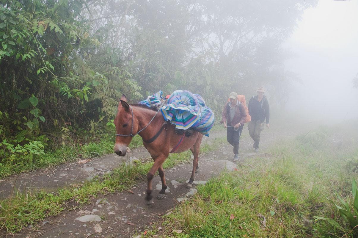 <p>Don Cesar s Rady cestou vzhůru do rezervace Otonga. Západní Andy, Ekvádor.</p>