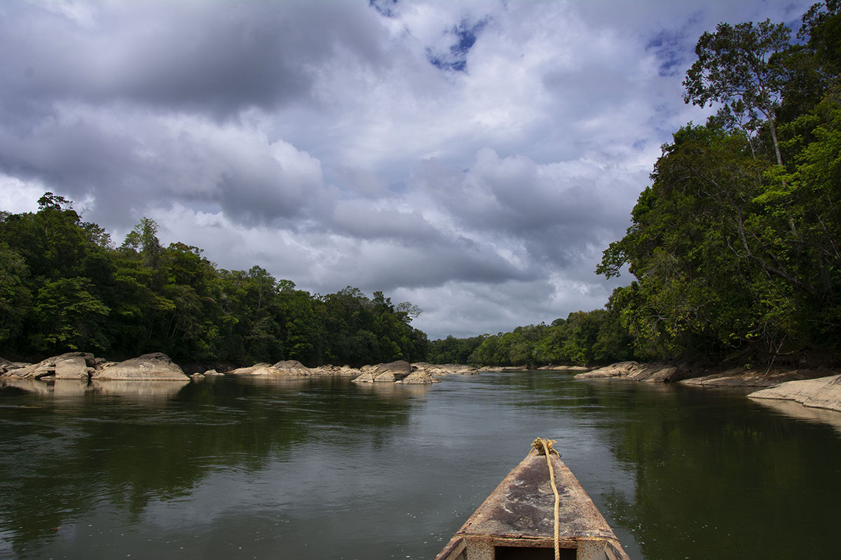 <p>My most frequent transport vehicle into Amazonian forest is a boat. Rio Tabaro (Sierra Maigualida), Venezuela.</p>
