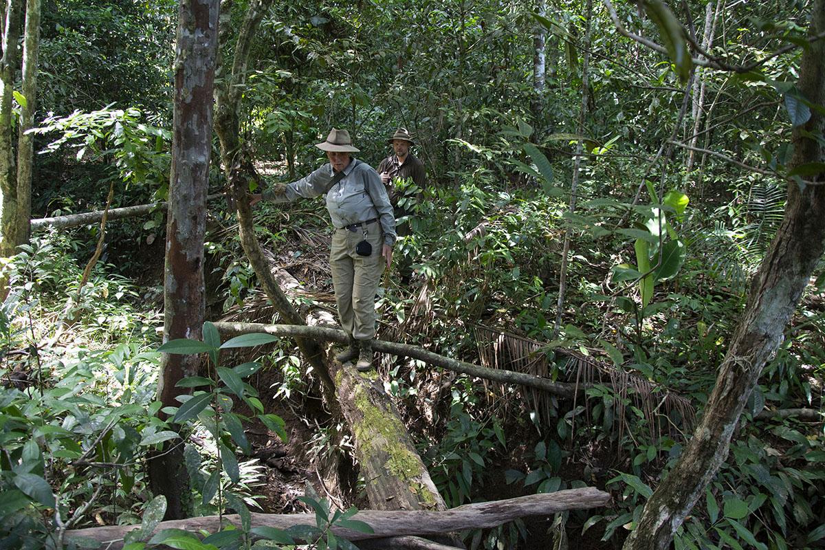 <p>Walking through forest along the Tabaro river (Rady a Honza). Sierra Maigualida, Venezuela.</p>