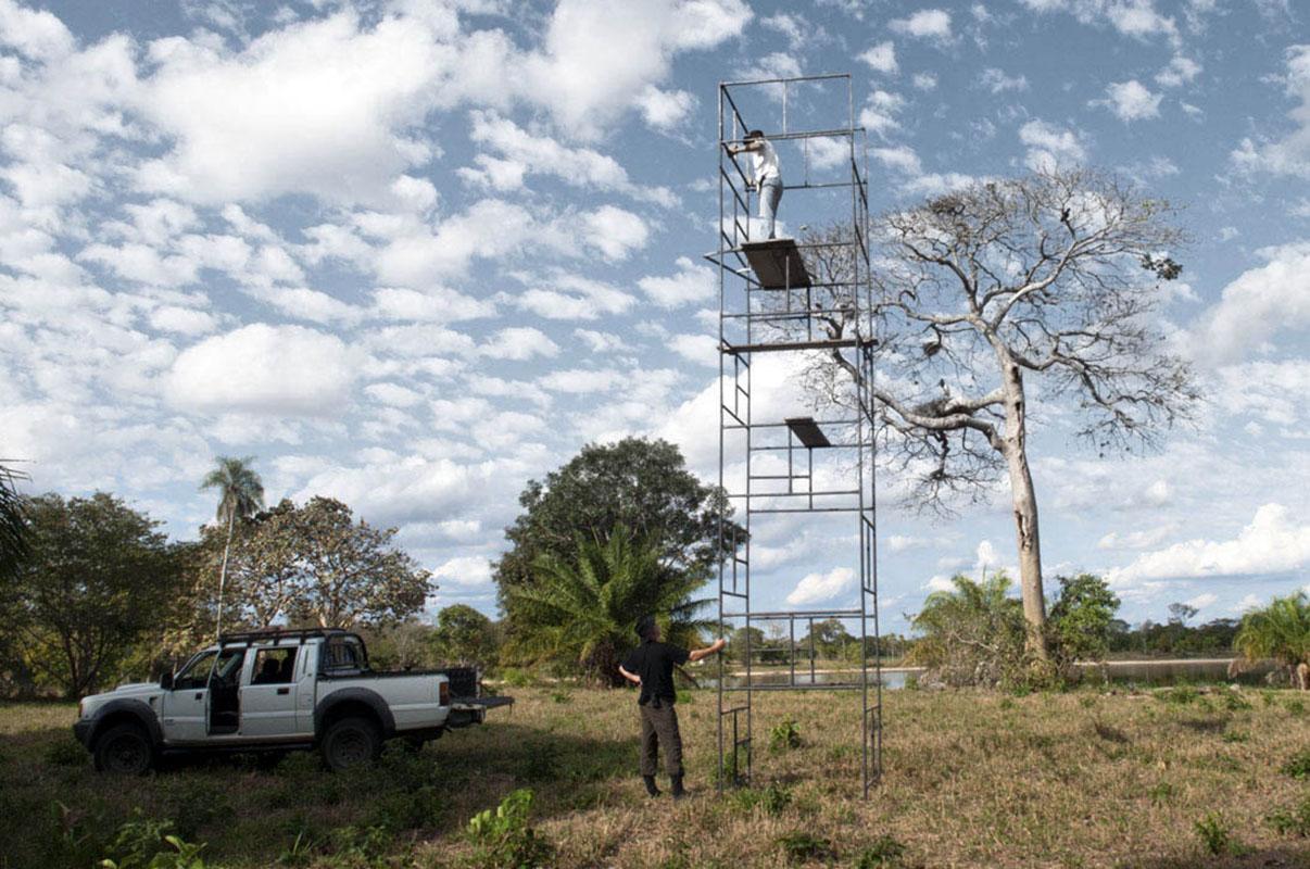 <p>Spolu s Lucasem Leuzingerem při stavbě pozorovací věže u hnízda jabiru (<em>Jabiru mycteria</em>). Pantanal Brazílie (foto Radana Dungelová).</p>