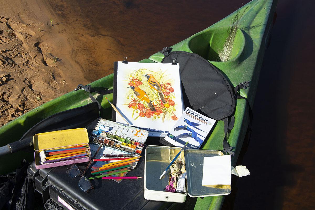 <p>Polní atelier. Pantanal, Brazílie.</p>