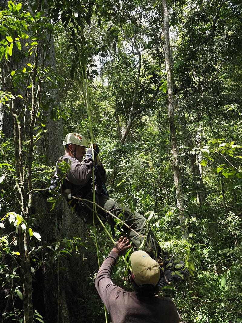 <p>Pokouším se vyšplhat do hnízda harpyje. Sierra Imataca, Venezuela (foto Radana Dungelová).</p>