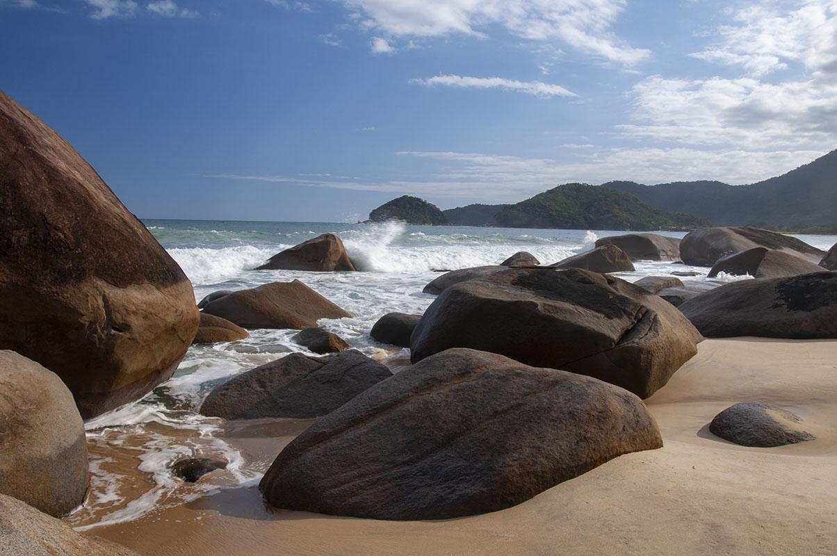 <p>The spectacular Mata Atlantica rainforest is home to numerous avian endemics. Trinidade, Brazil.</p>