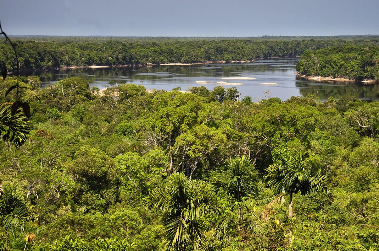 <p>View of Brazo Casiquiare from Culimacare rock. Venezuela.</p>