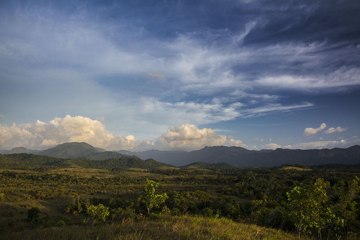 <p>Sierra Maigualida, Venezuela.</p>