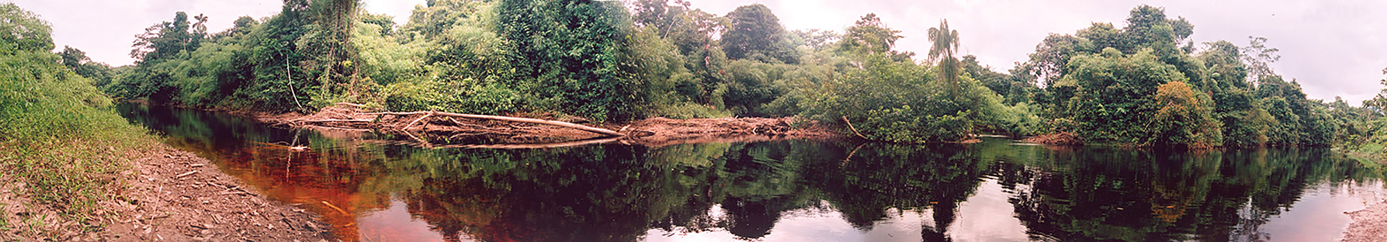 <p>Probably the very first photo of Rio Baria bifurcation (2007). Maturaca canal is on the(left). Venezuela – Brazil.</p>