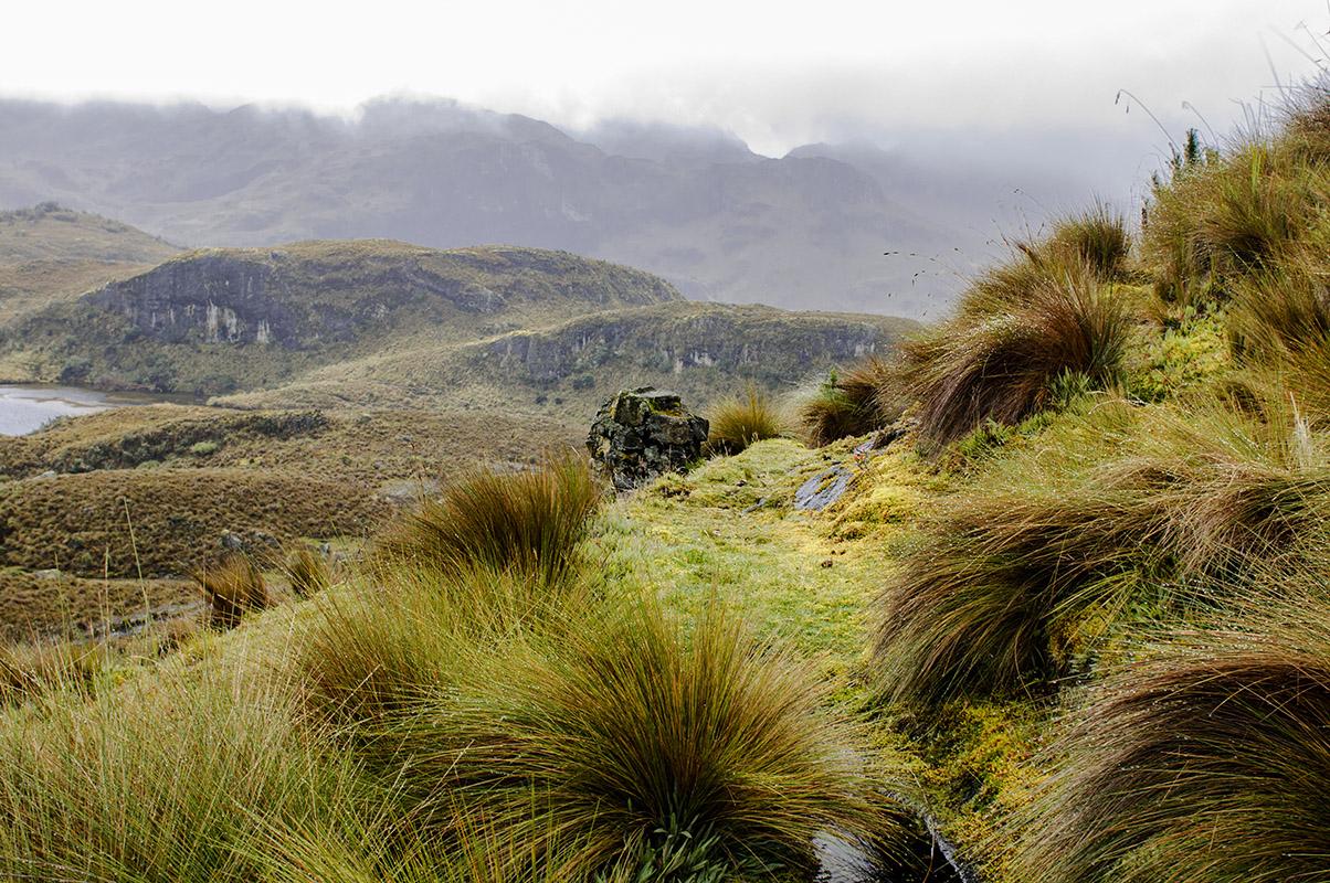 <p>National park Cajas. Andes, Ecuador (photo Radana Dungelová).</p>