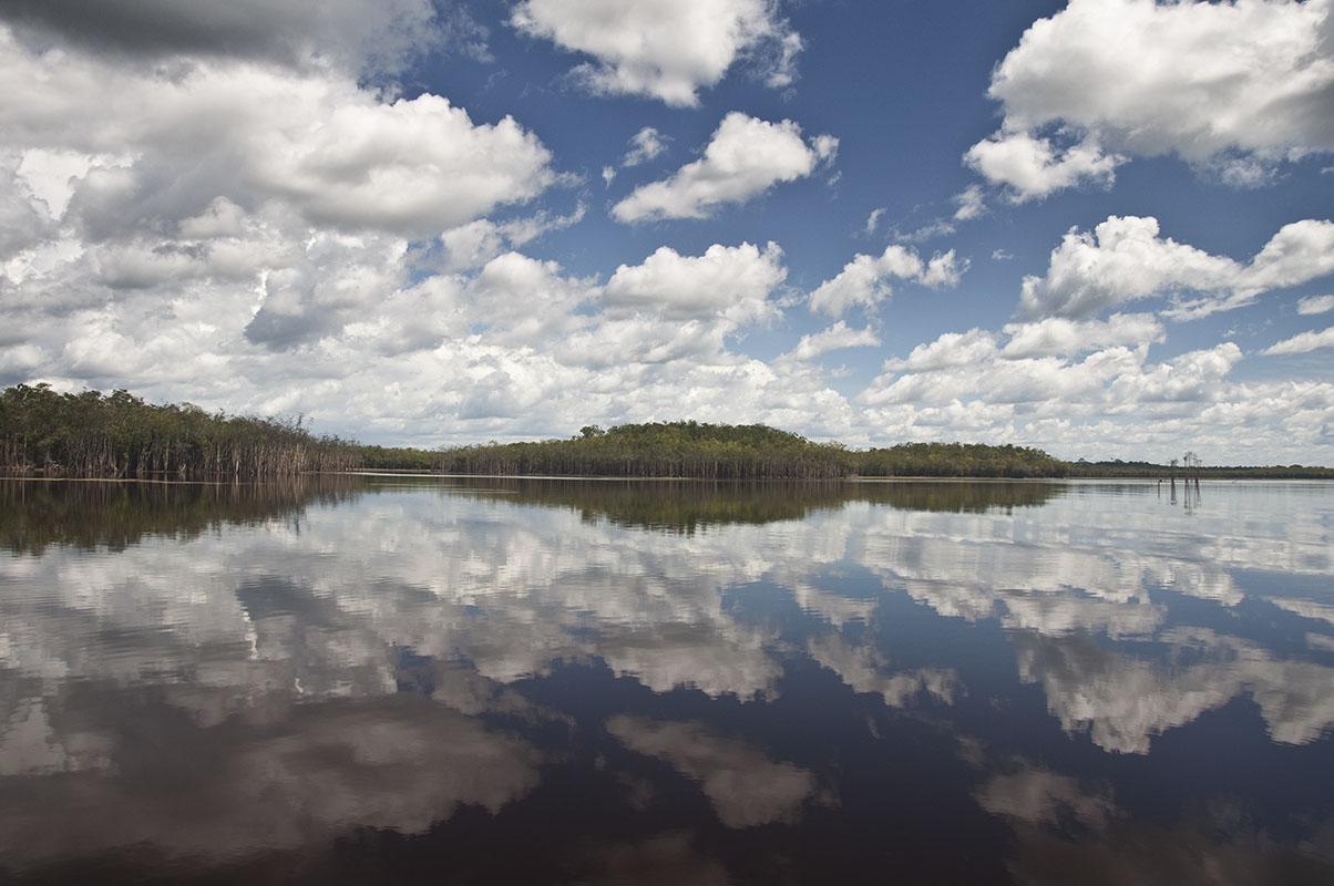 <p>Lagoon on Pasiba river (Casiquiare tributary), Venezuela.</p>