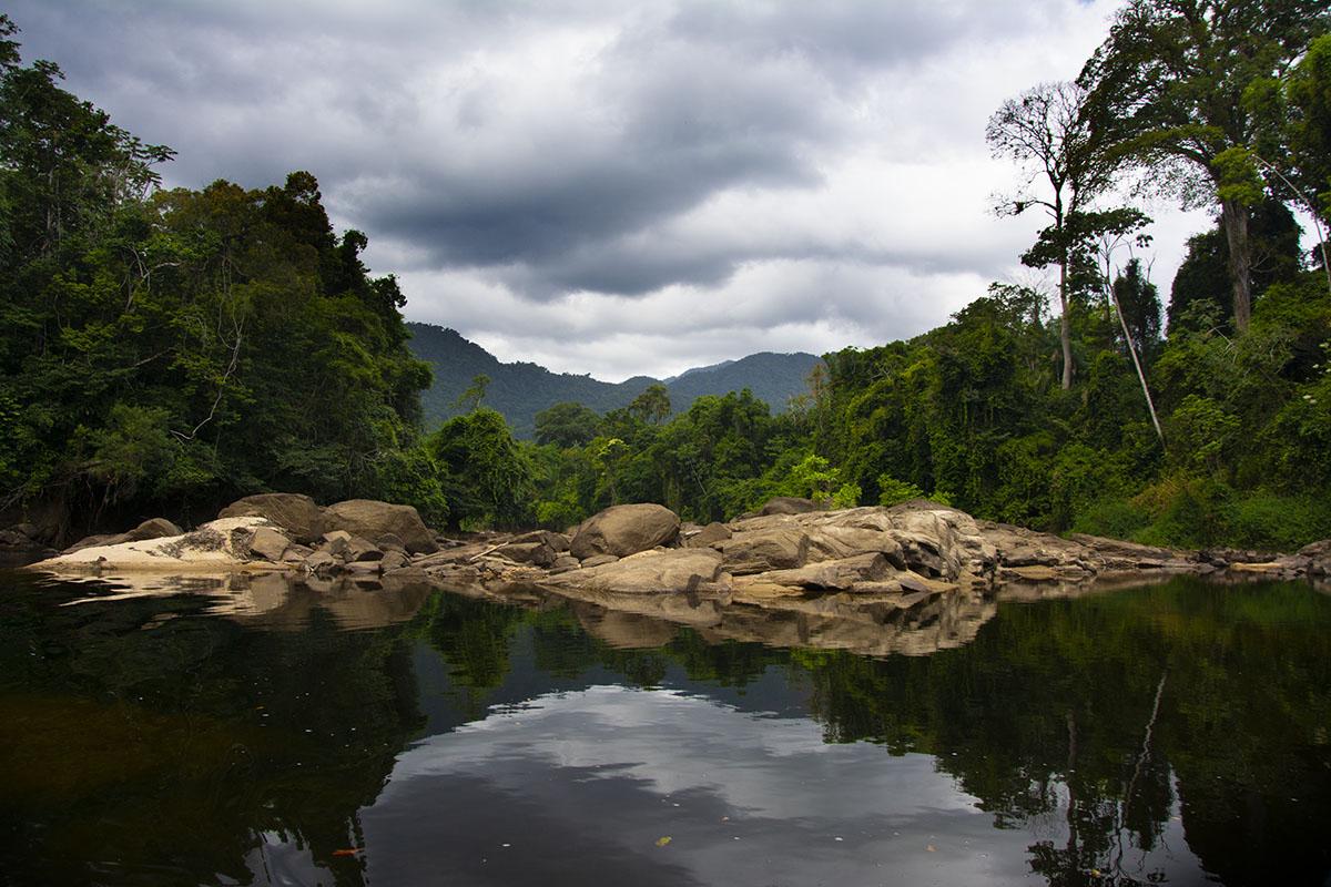 <p>Rio Tabaro (Maigualida, Amazonie), Venezuela.</p>