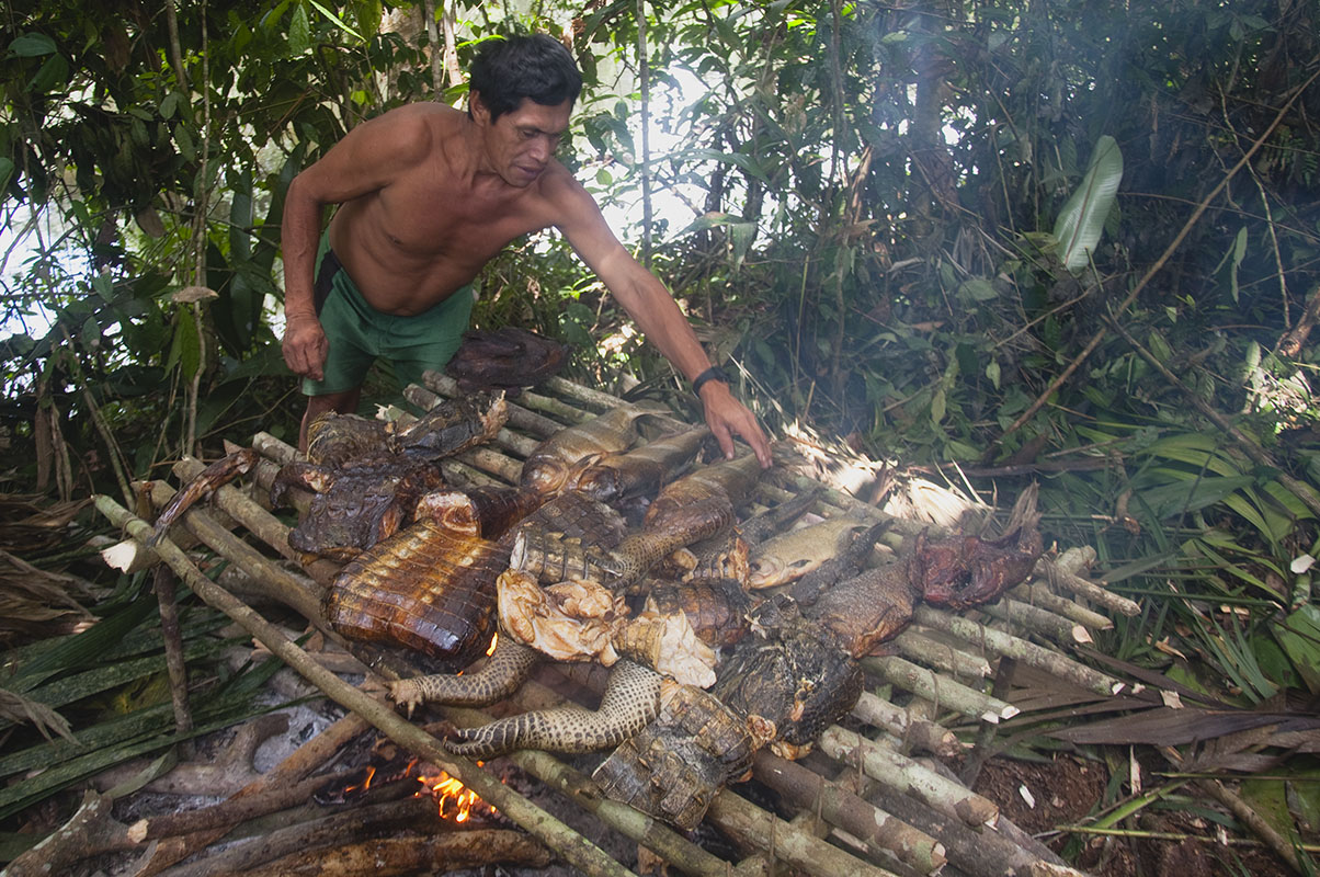 <p>Preserving camp food (here pieces of caimans) is not easy. That's why indians all the catch immediatelly smoke above the fire. Nichare, Sierra Maigualida, Venezuela.</p>
