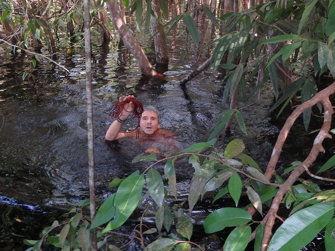 <p>Vladimír je nadšený. V zatopeném lese našel provaz, který tam v táboře zapoměl o rok dříve. Rio Pasimoni, Venezuela.</p>
